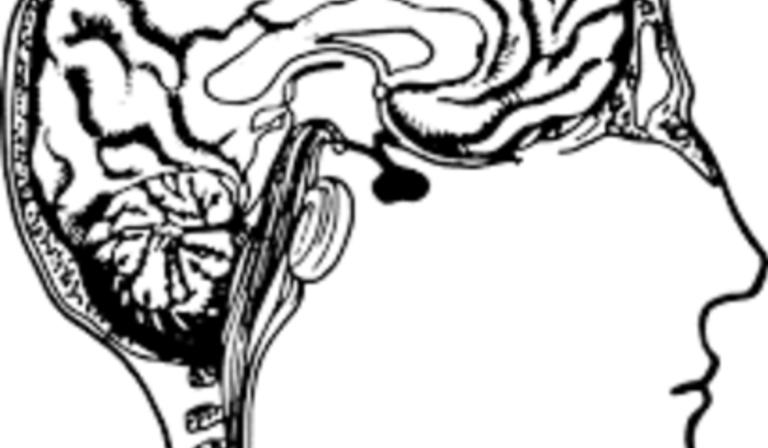 Pratique cérébrale